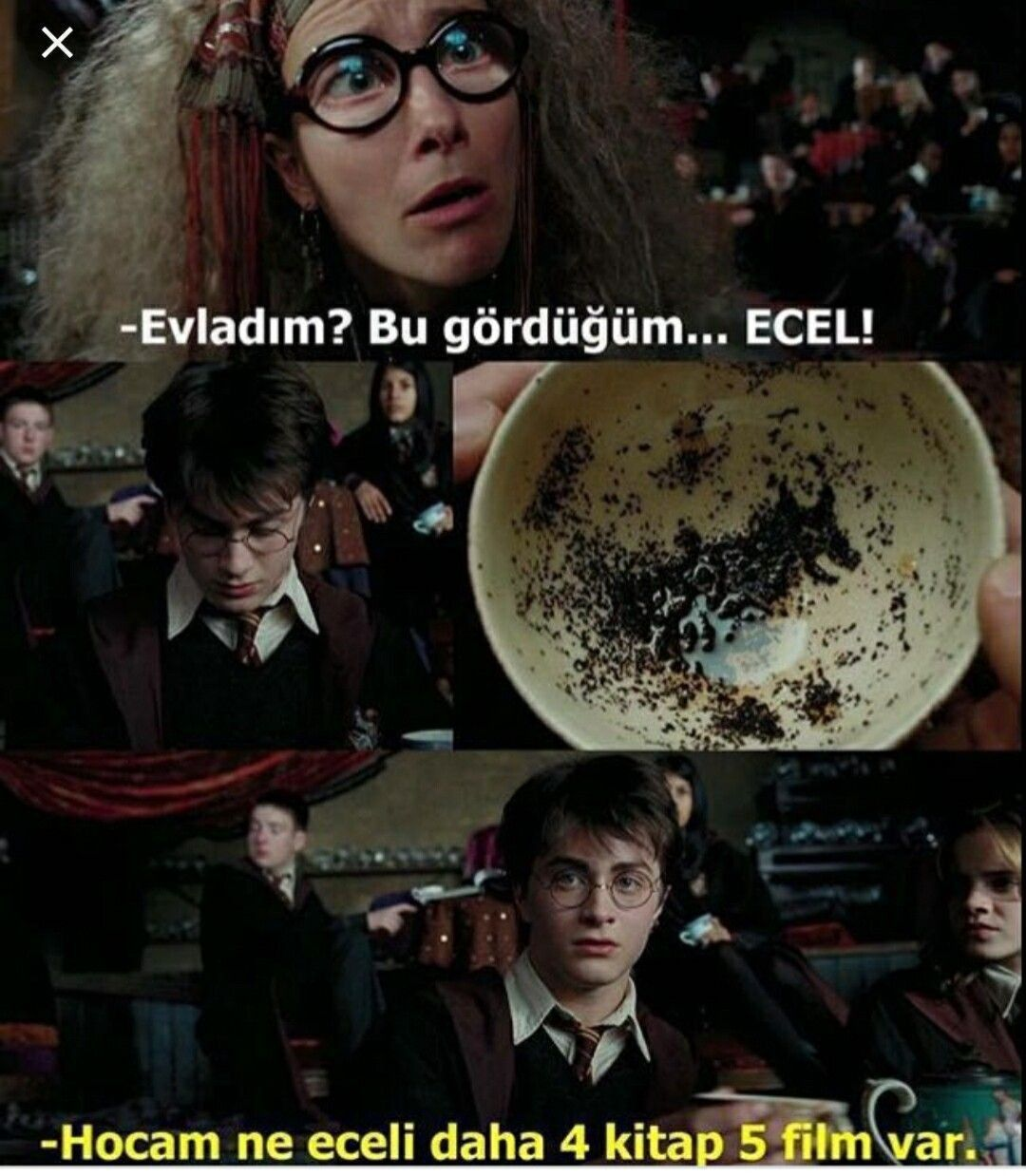 Harry Potter Capsleri   - 35.Caps》Ecel