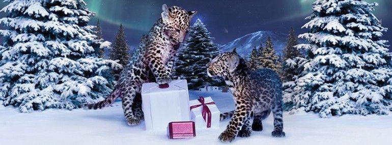 Campanha de Natal Cartier  http://fashioninmag.pt/site/?p=470