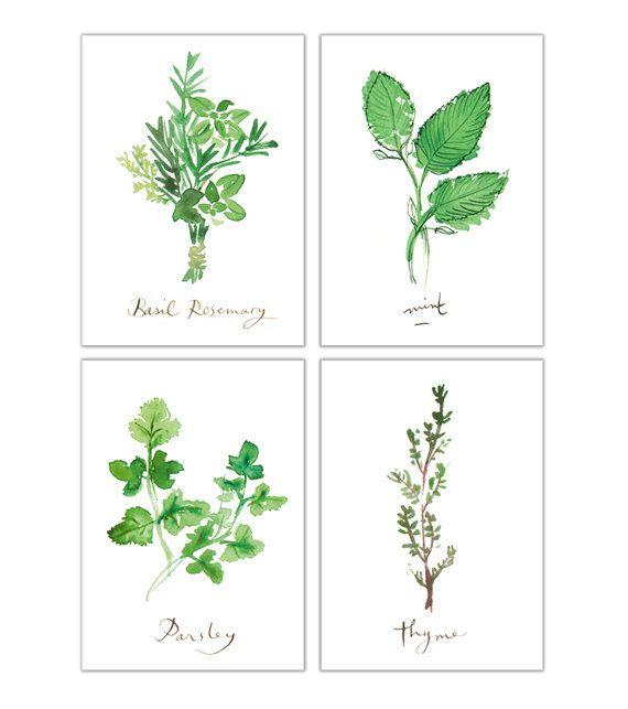 Quatre Aquarelles Herbes Aromatiques Décoration Cuisine Art - Herbes aromatiques en cuisine