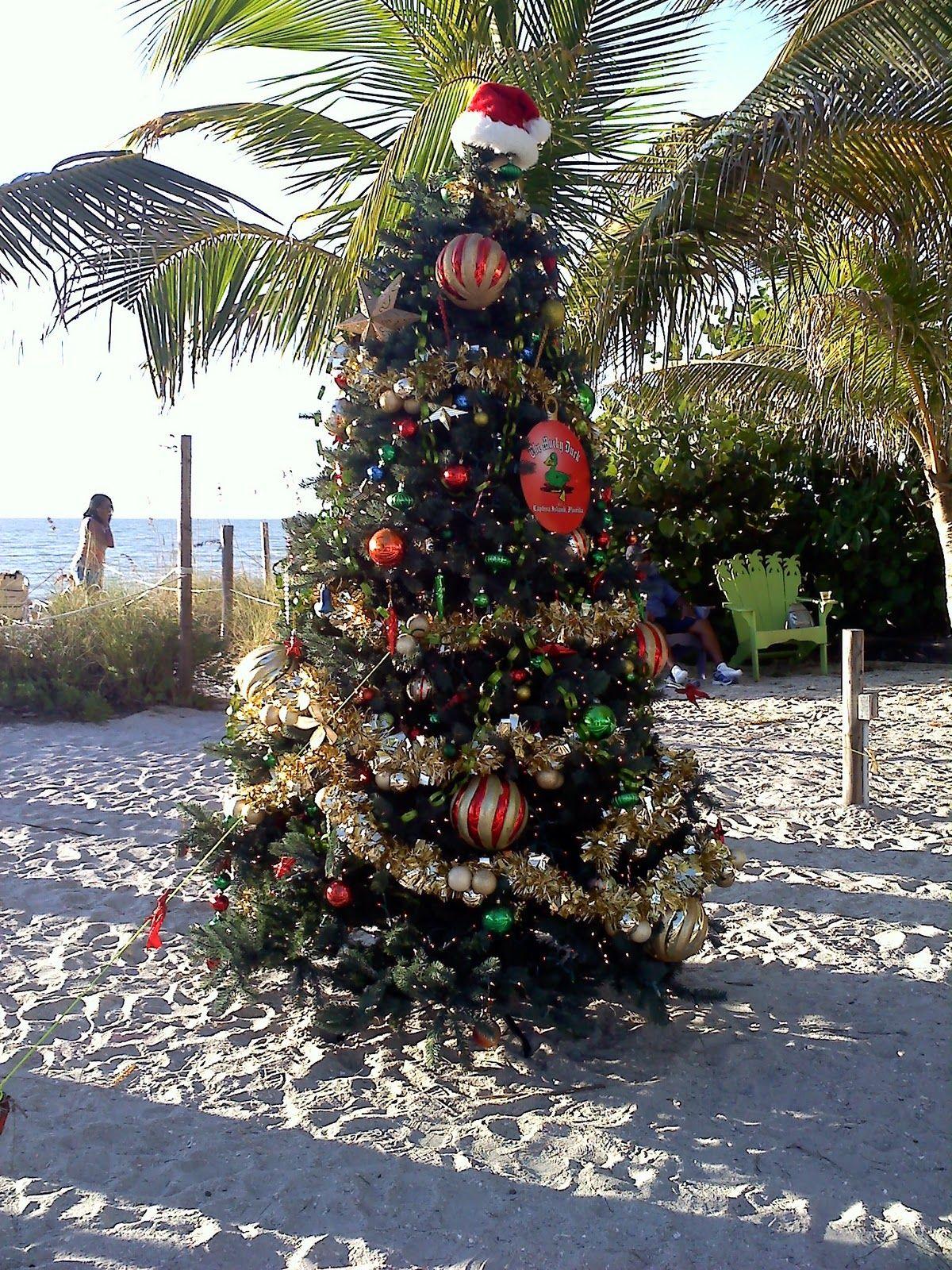 Christmas With Amy More Signs Of Christmas On The Beach Beach Christmas Beachy Christmas Tree Beach Christmas Trees