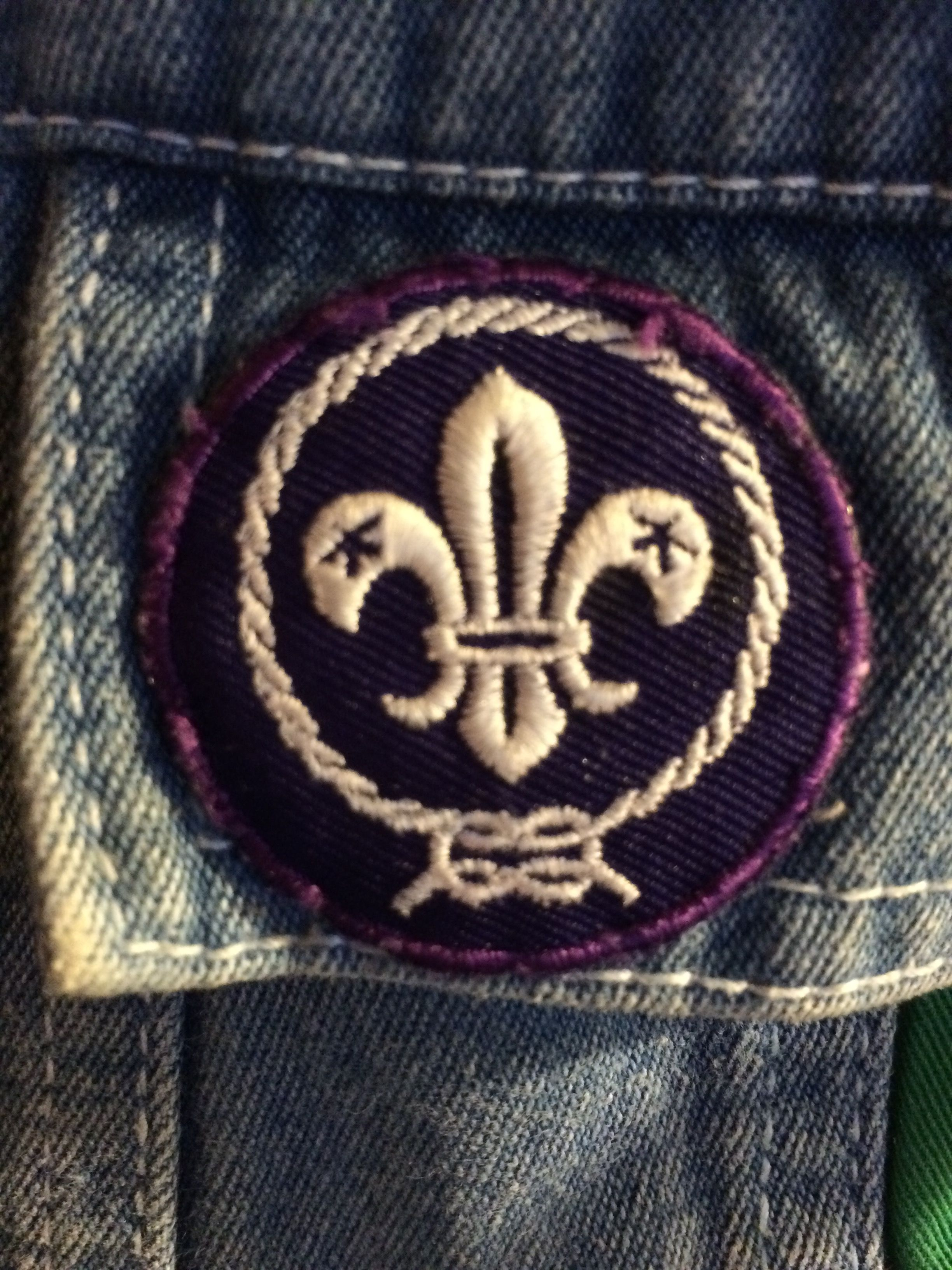 Boyscout patch found at the antique mall with brandy Oberg