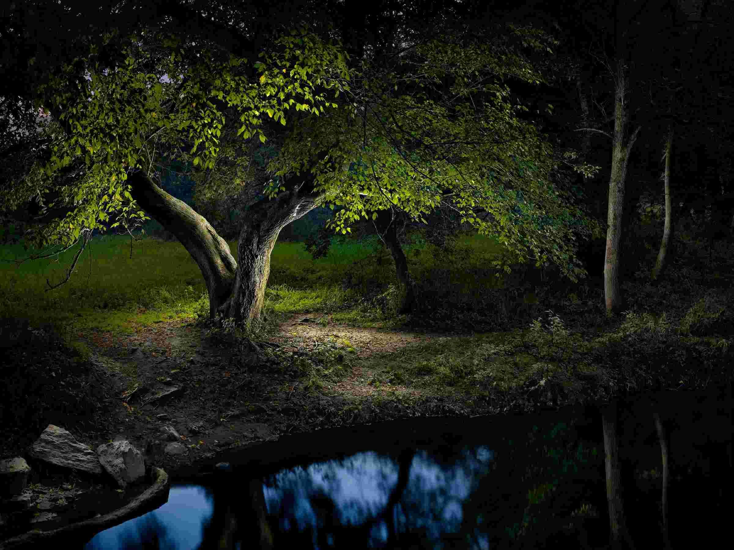 Fine art photographer Harold Ross uses delicate light painting ... for Light Painting Landscape Photography  54lyp