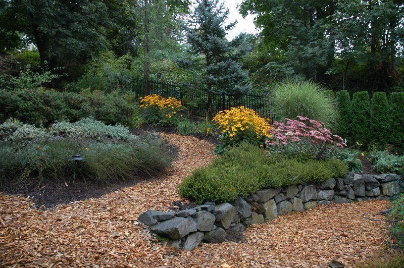 Simple Low Maintenance Landscape Designs Low 400 x 300