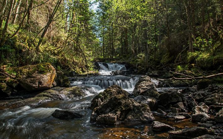 Lataa kuva vuori joen, vesiputous, metsä, kivet, kaunis luonto, Asdol, Norja