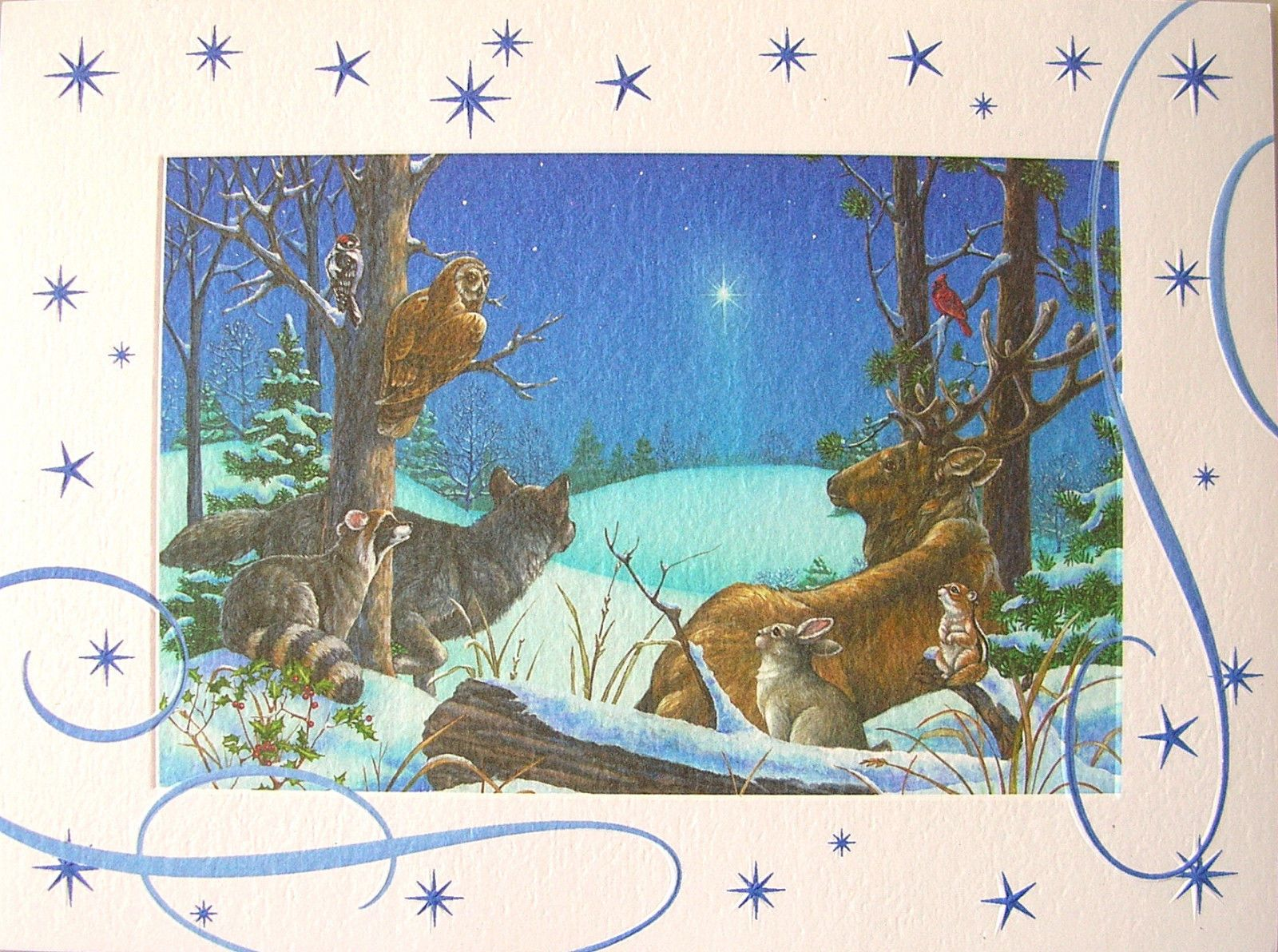Leanin tree elaine maier animals owl deer wildlife christmas star leanin tree elaine maier animals owl deer wildlife christmas star greeting card kristyandbryce Images