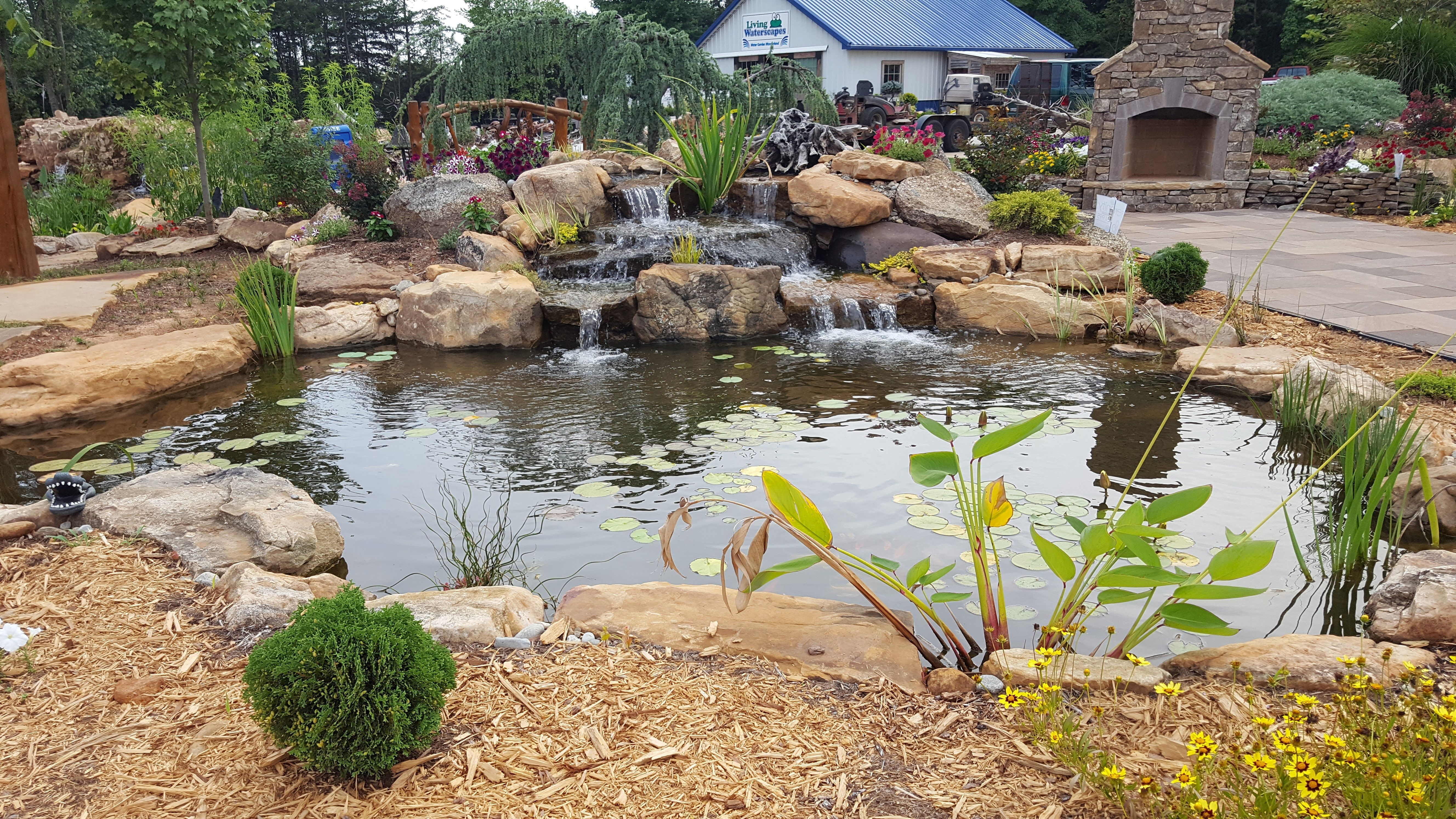 Serenity Deluxe Pond Package By Living Waterscapes Near Greensboro Nc Pond Life Pond Fish Ponds