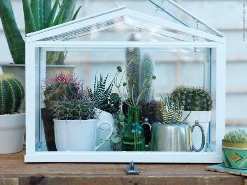 Amazon Com Ikea Greenhouse Indoor Outdoor White 640 x 480