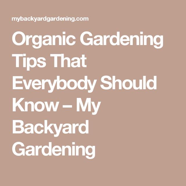 Organic Gardening Tips That Everybody Should Know – My Backyard Gardening