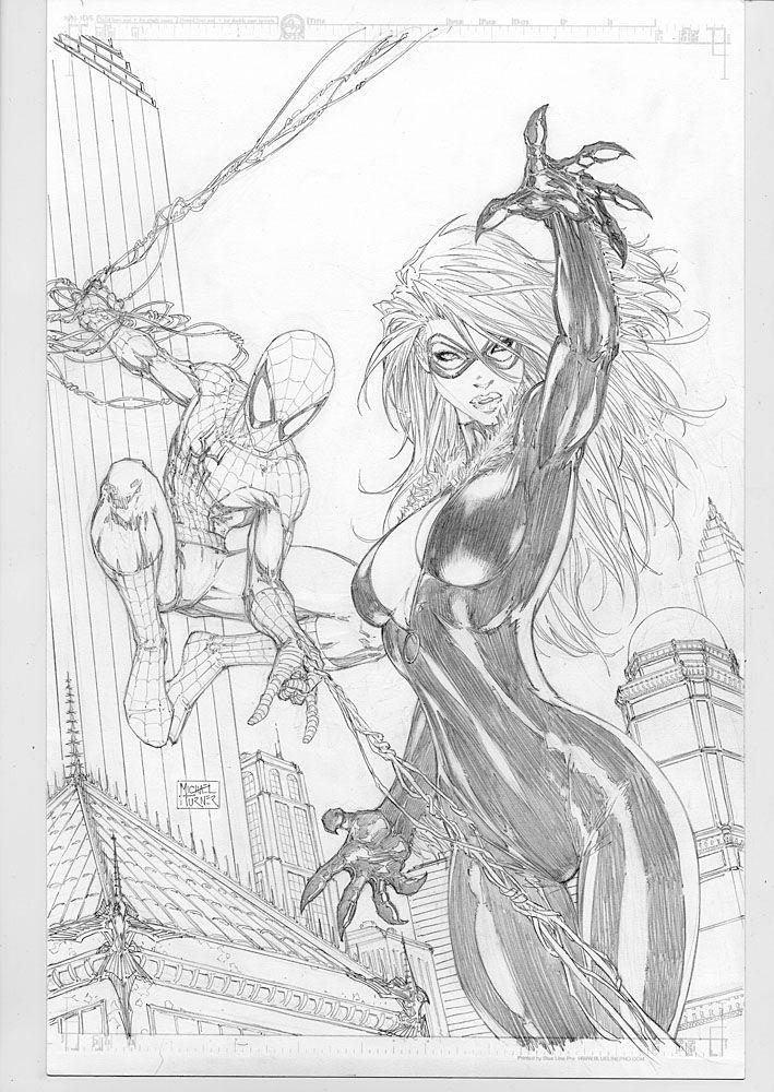 Spiderman & Black Cat by Michael Turner | Comic Book Pinups ...