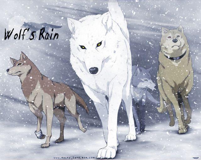 Photo of Wolf's Rain