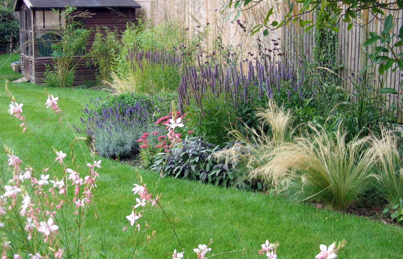 Grasses And Perennials In Surrey Garden
