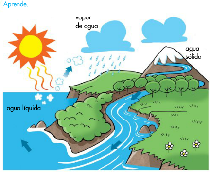 Qué Es El Ciclo Del Agua Ciclo Del Agua Ciclo Del Agua Dibujo Maqueta Ciclo Del Agua