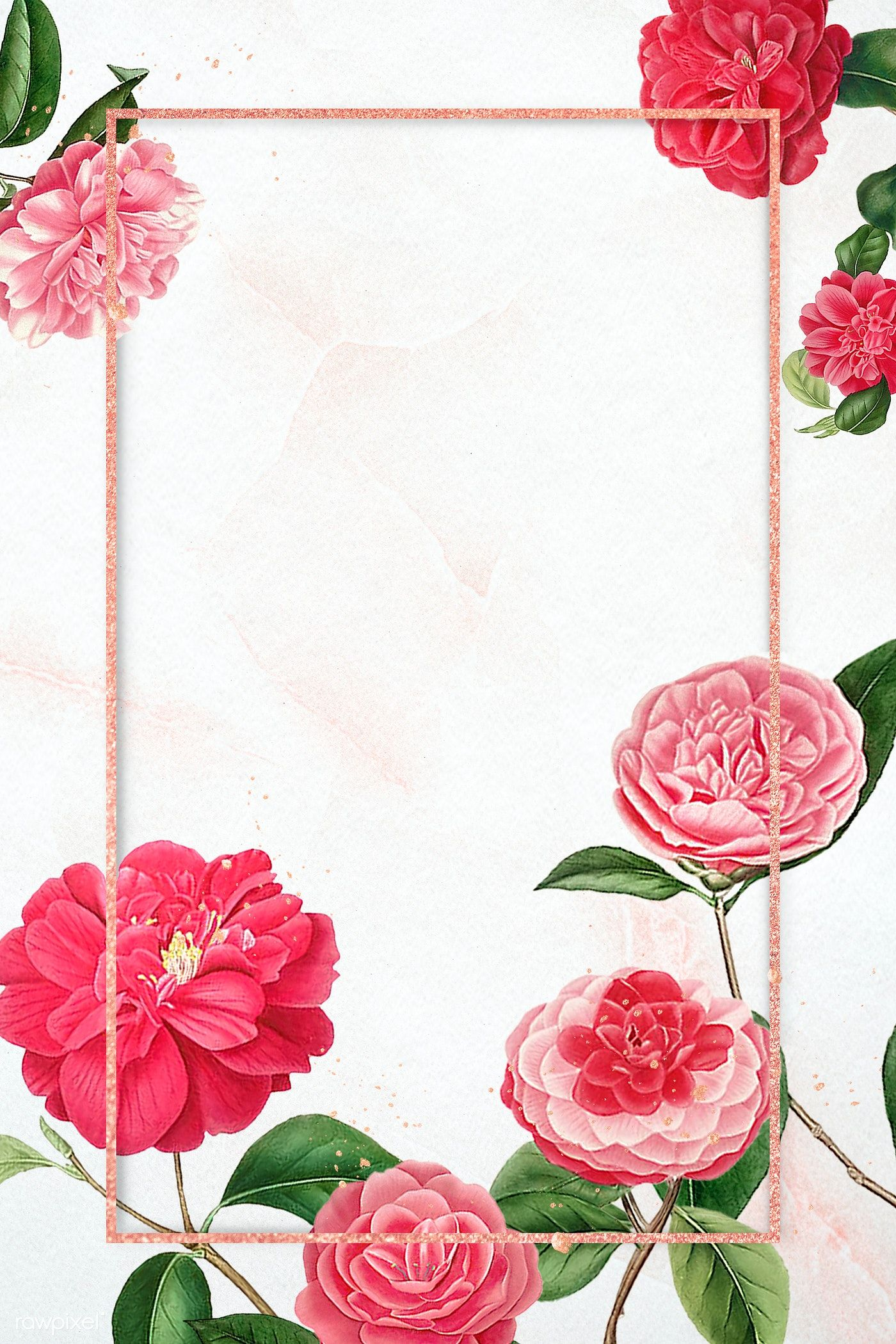Download Premium Psd Of Red And Pink Camellia Flower Patterned Blank Frame พ นหล ง