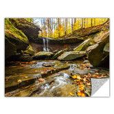 Found it at Wayfair - Blue Hen Falls 3 by Cody York Art Appeelz Removable Wall Decal