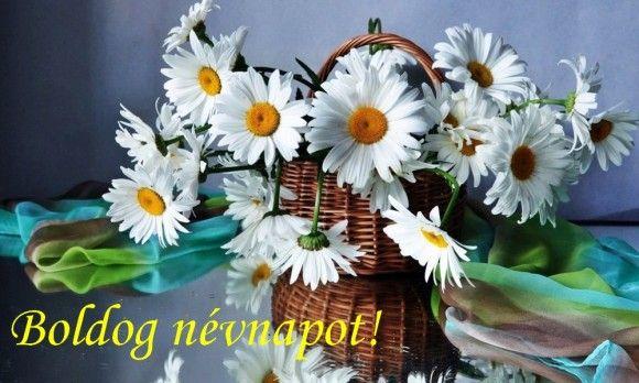 névnapi képeslap képek NÉVNAPI KÉPESLAP | Virágoskert | Pinterest | Birthday greetings névnapi képeslap képek