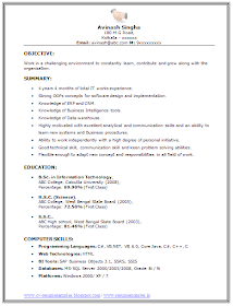 Over 10000 Cv And Resume Samples With Free Download Bsc It Resume Sample Resume It Cv Resume Format