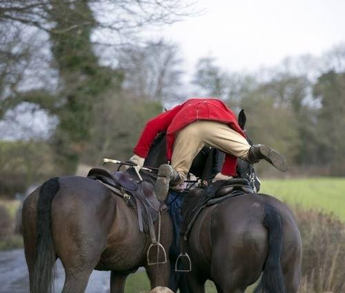 Horses, Fox Hunting, Hunt Seat