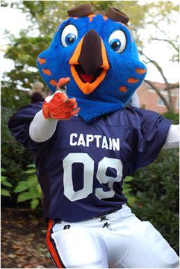 UT Martin Skyhawks mascot, Captain Skyhawk | Mascot ...