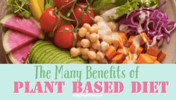 Photo of Essen Sie diese 15 pflanzlichen kalziumfreien Lebensmittel ohne Milchprodukte für Veganer – einfache reine Lebensmittel
