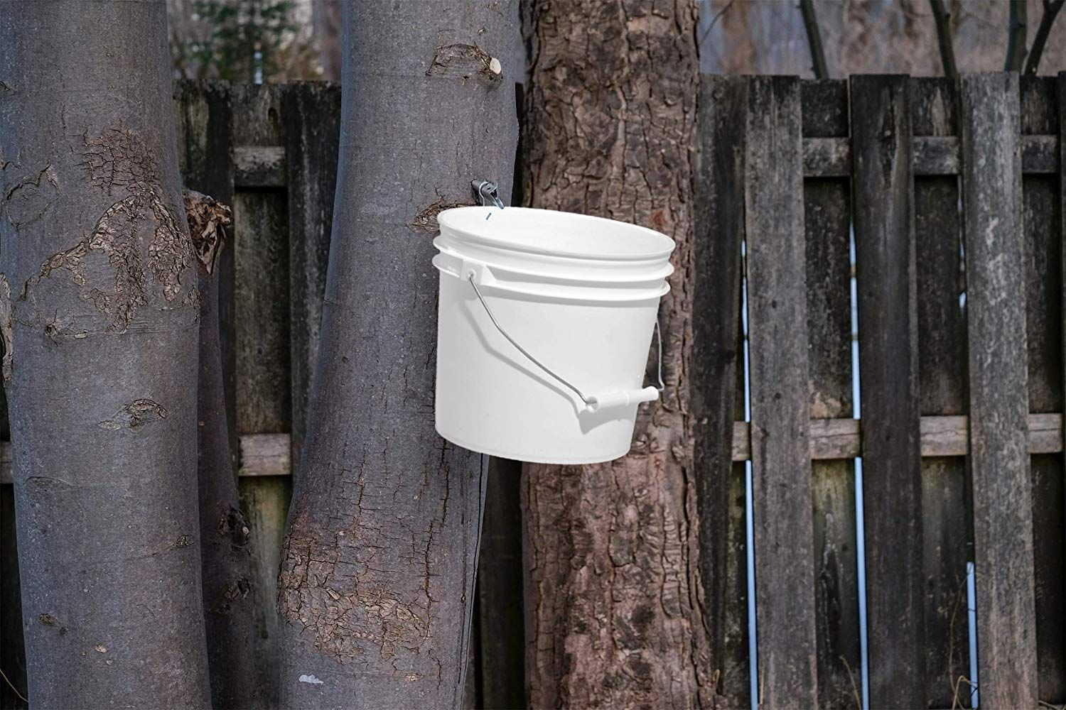 These 1 Gallon Pails Are Built Sturdy With A Wire Bail And Plastic Handgrip For Ease And Comfort Perfect For Your Maple Syrup Harvesting Th Gallon Pail Maple