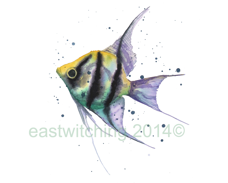 watercolor angel fish ...
