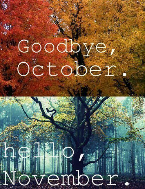 Goodbye Beautiful October, Hello Cosy November X