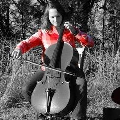 Bellafina Overture Series Violin Outfit   Music & Arts