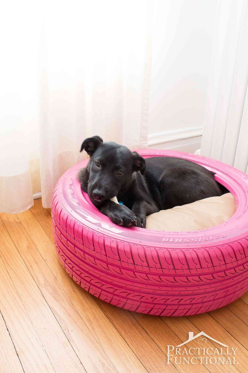 DIY Dog Bed From A Recycled Tire! Diy dog bed, Dog bed