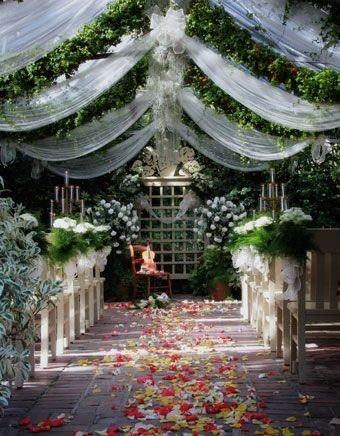 Conservatory garden wedding venue st louis mo melissa for Beautiful gardens to get married in