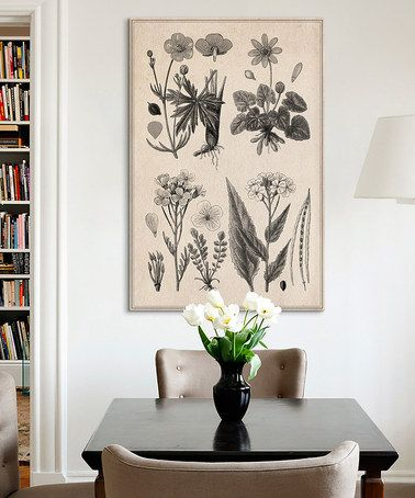 This British Herbal Sketch Canvas is perfect! #zulilyfinds