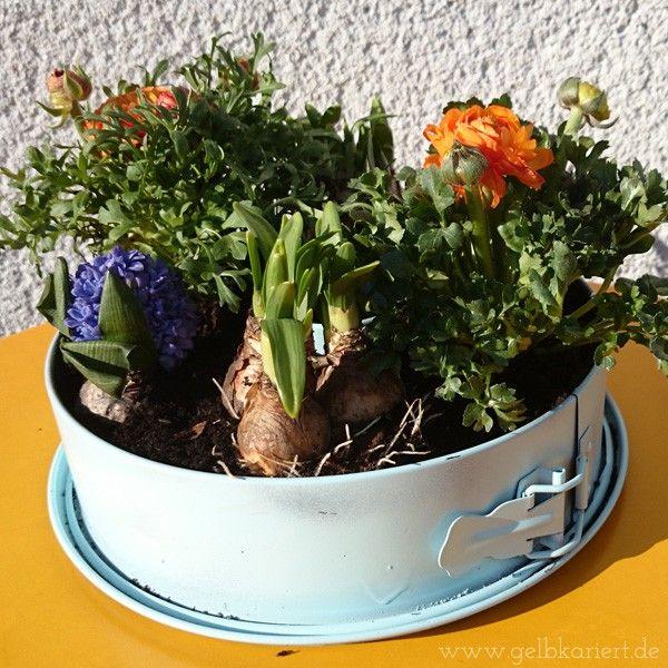 upcycling fr hlingsblumen in einer alten springform recycling pinterest. Black Bedroom Furniture Sets. Home Design Ideas