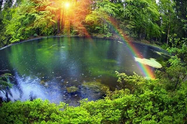 Resultado de imagen de Un bello arco iris