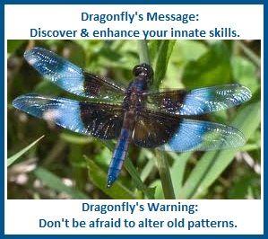 animal spirit guide-dragonfly balancedwomensblog.com