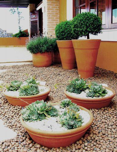 Projetos e arranjos com plantas suculentas jardim Jardim com pedras, Jardim em vasos e  # Decoração De Jardim Com Vasos E Pedras