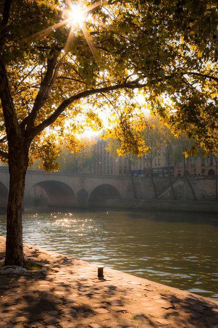 morning sun in Paris
