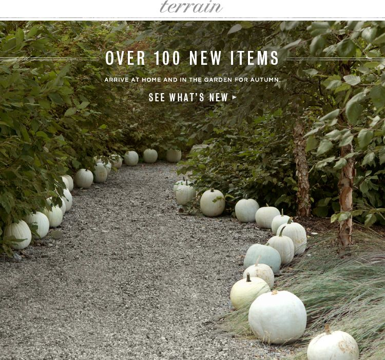 Over 100 new items arrive at home and in the garden for autumn at Terrain.