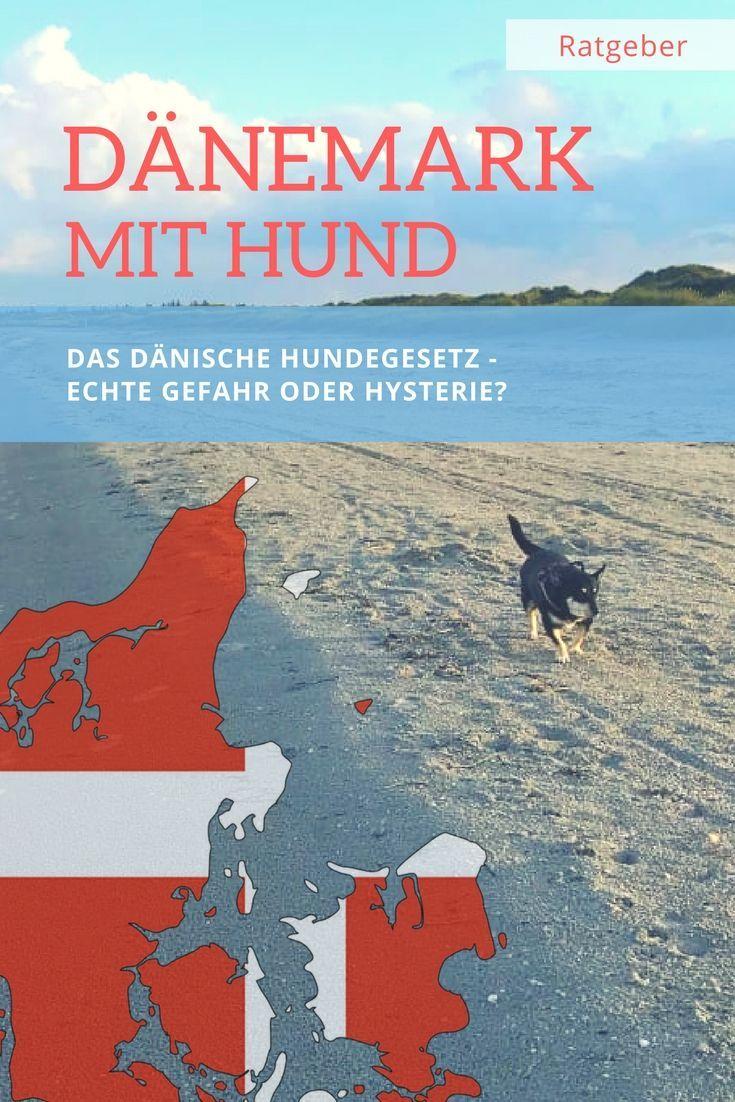 Dänemark Urlaub Hund Eingeschläfert