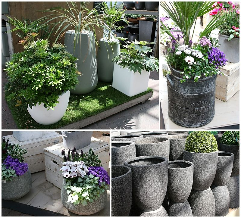 Ideas For Pots For A Grey & White Garden Design