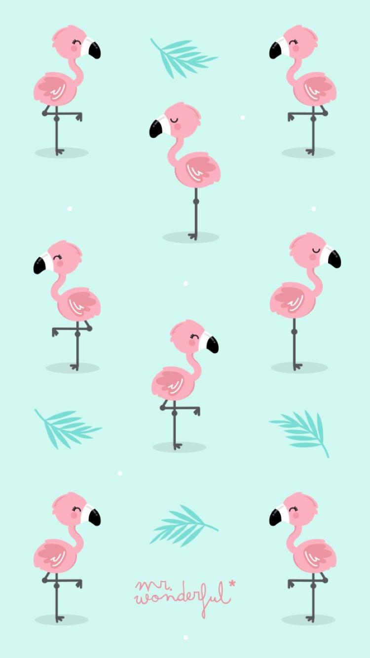 Flamingos mr wonderful en 2019 for Mr wonderful fondos movil