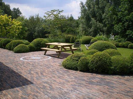 Buxus clouds overijse garden pinterest buxus garden ideas