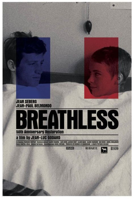 French New Wave Style Icons Film Posters French Movies