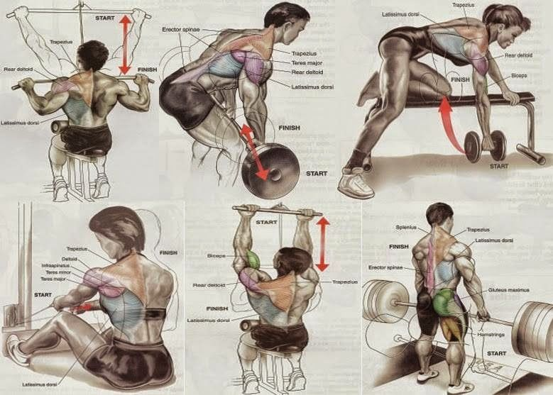 how to pump up your deltoid muscle with different exercises How to strengthen shoulders bands to get an excellent workout for your push-up will develop a meaty hill of muscle tying powerfully into your.