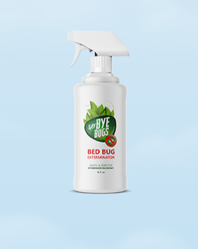 Your Bed Bug Destroyer Kit Is Ready Bed Bugs Bugs Insecticide