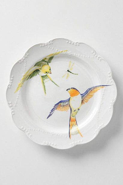 Maluku Dinner Plates with rainbow lorikeets - such beautiful colours