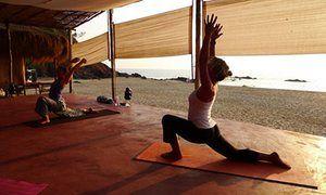 Lotus Yoga Retreat, Goa