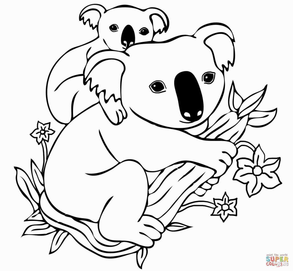 Koala Coloring Page | Bear coloring pages, Free coloring ...