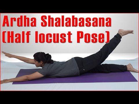 ashtanga yoga  ardha shalabasana half locust pose  its