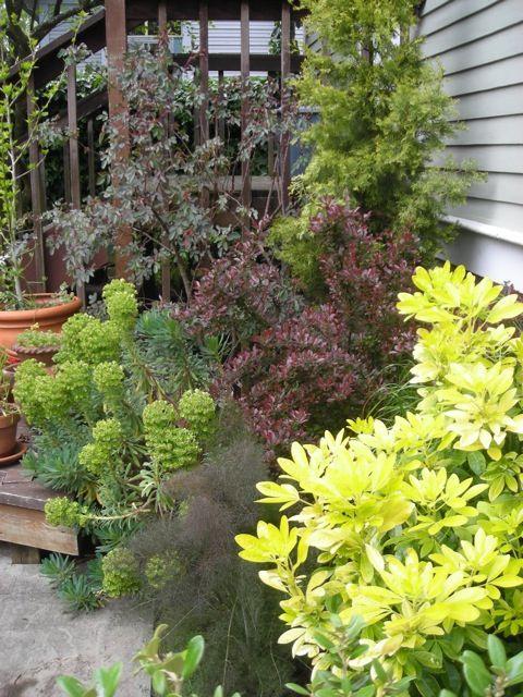 Galaher Gardens Gallery Garden Design Container Gardening Plants