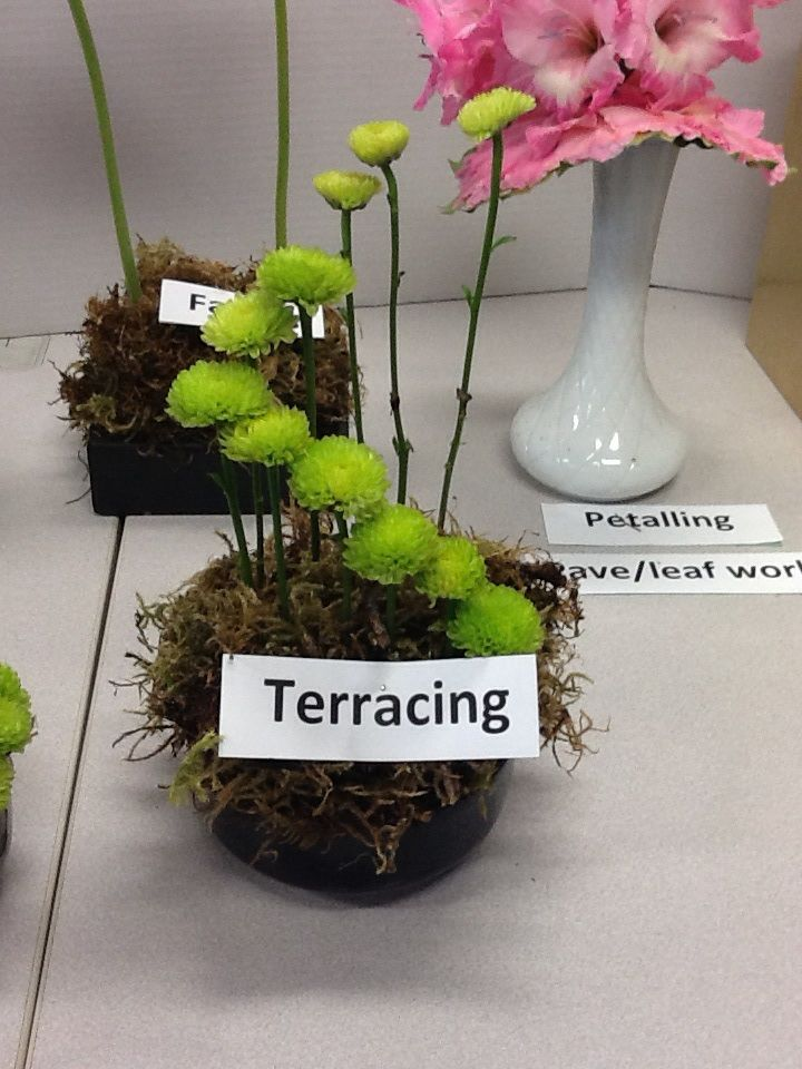 Terracing Floral Mechanics Floral Craft Floral Arrangements
