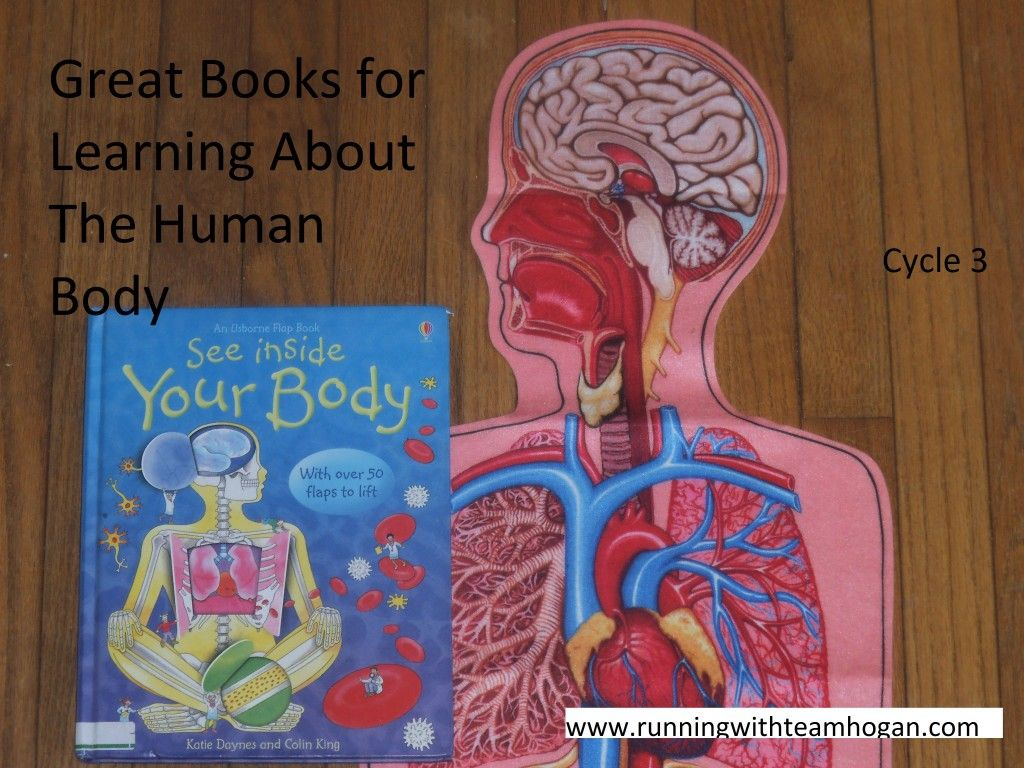 Great Books For Learning About The Human Body